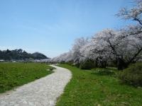 2019-04-21北上展勝地198