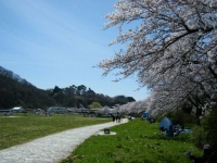 2019-04-21北上展勝地200