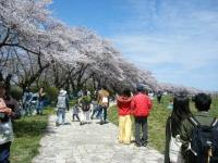 2019-04-21北上展勝地202