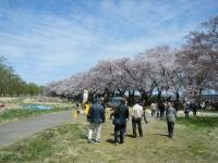 2019-04-21北上展勝地209
