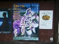2019-07-01毛越寺あやめ祭り007