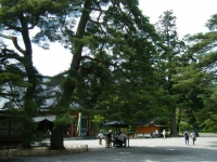 2019-07-01毛越寺あやめ祭り016