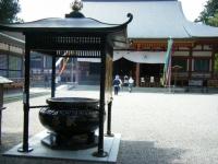 2019-07-01毛越寺あやめ祭り020