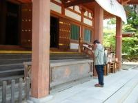 2019-07-01毛越寺あやめ祭り025