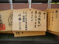 2019-07-01毛越寺あやめ祭り032