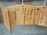 2019-07-01毛越寺あやめ祭り035
