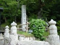 2019-07-06中尊寺ハス祭り005