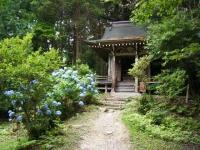 2019-07-06中尊寺ハス祭り017