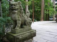 2019-07-06中尊寺ハス祭り029