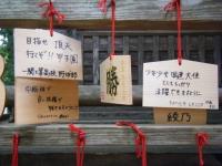 2019-07-06中尊寺ハス祭り038 - コピー