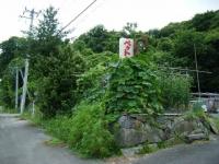 2019-07-22重箱石03