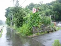 2019-07-23重箱石03