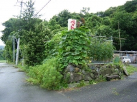2019-07-24重箱石03