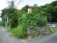 2019-07-25重箱石03