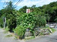 2019-07-29重箱石03