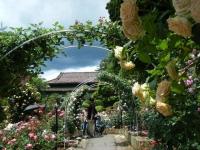 2019-06-23花巻温泉薔薇園129