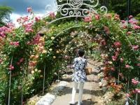 2019-06-23花巻温泉薔薇園138