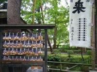 2019-07-06中尊寺ハス祭り128