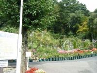 秋の花巻温泉街バラ園2019-09-28-01