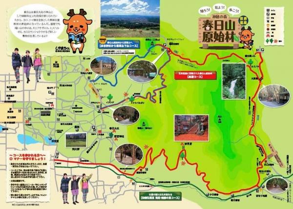 春日山原始林マップ