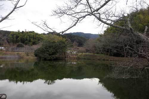 190128永久寺跡池