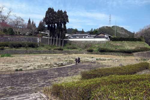 190326比曽川砂防公園