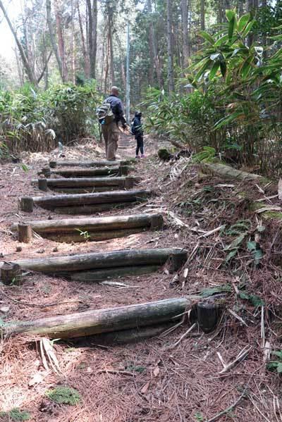 190406都介野岳へ階段