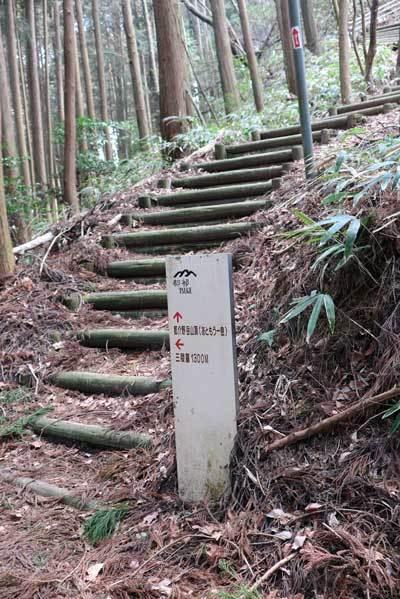 190406都介野岳へ階段2