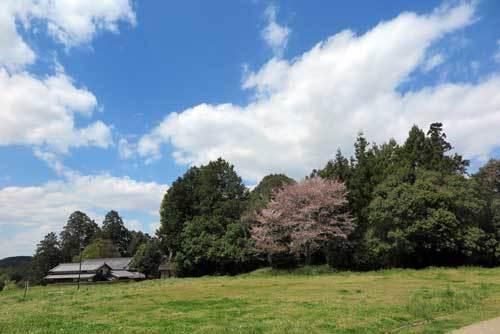 190415檜隈寺跡