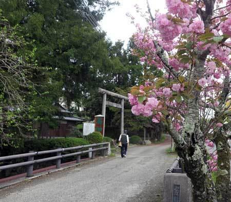 190425葛神社