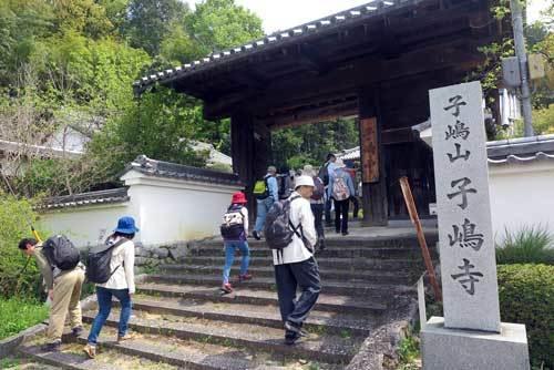 190421子嶋寺