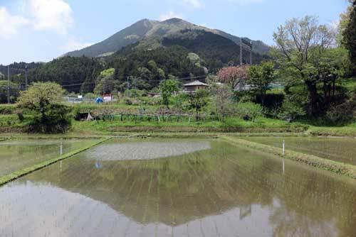190502額井岳2
