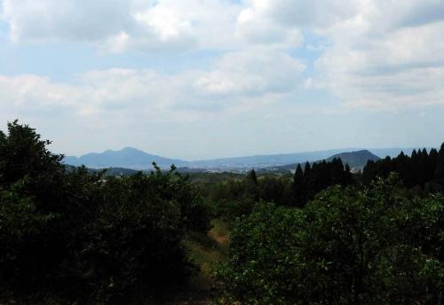 190521畝傍山