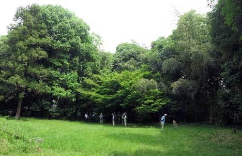 190526定林寺跡3