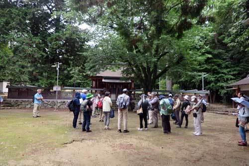 190616八幡神社