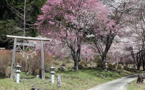 190409局ヶ岳神社