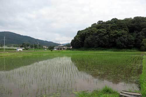 190707三輪山と箸墓