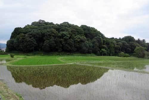 190707箸墓