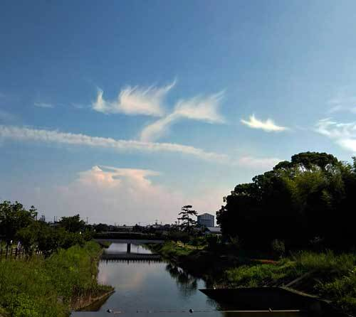 190730秋篠川