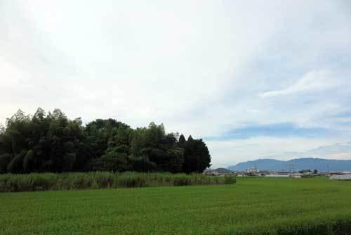190905矢塚古墳