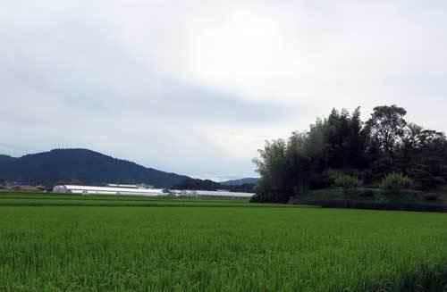 190905東田大塚古墳と三輪山