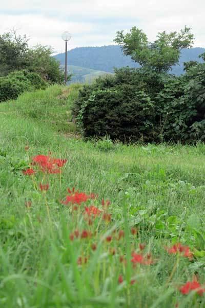 190924若草山