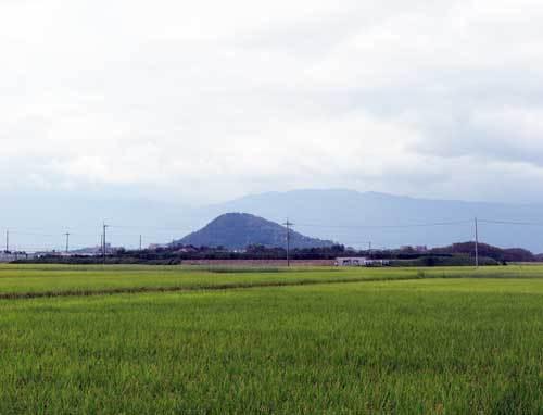 191006稲穂畝傍山