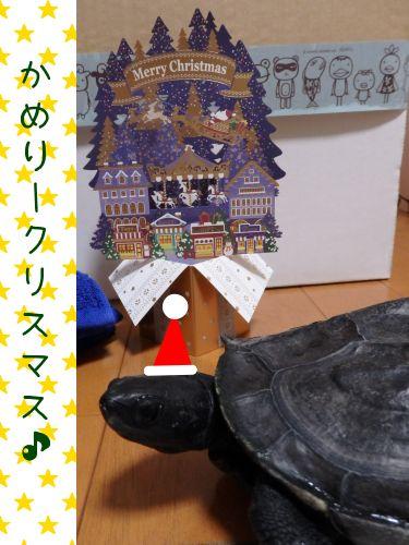 20181218-01.jpg