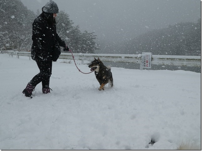 20181229雪01-08