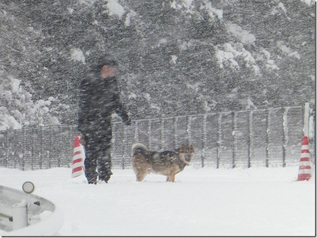 20181229雪02-01