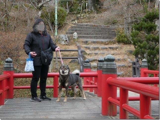 20181231大晦日お散歩納め-18