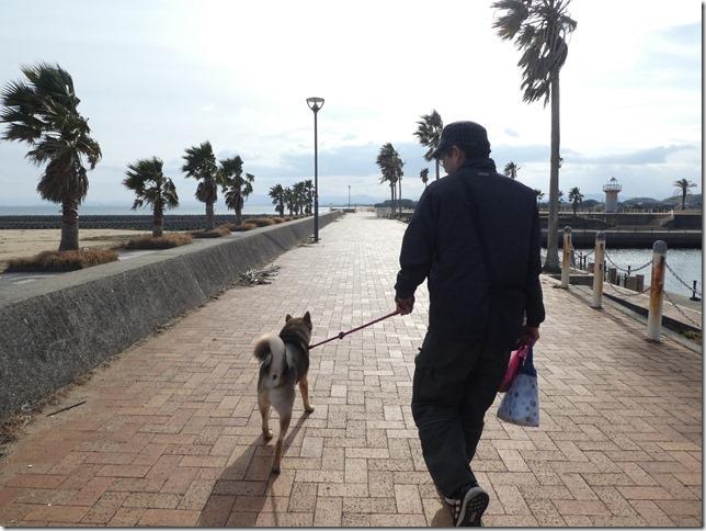 20190210マリーナ散歩-09