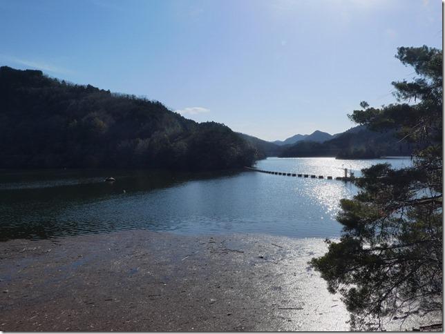 20190310ダム散歩03-04