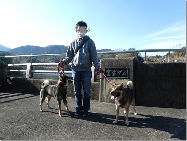 20190310ダム散歩03-12